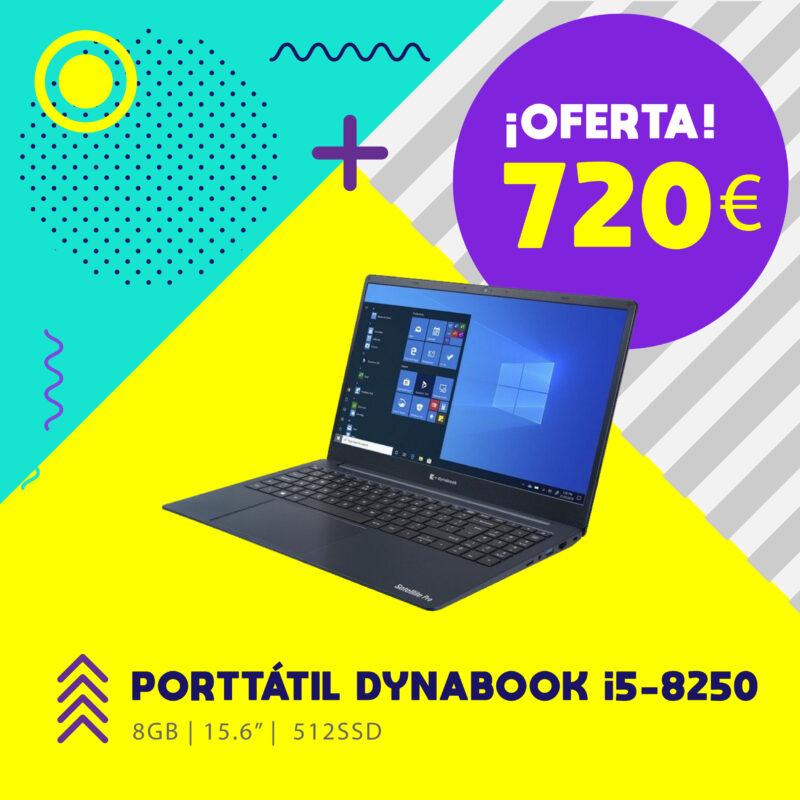 onice-informatica-portatil-dynabook-04